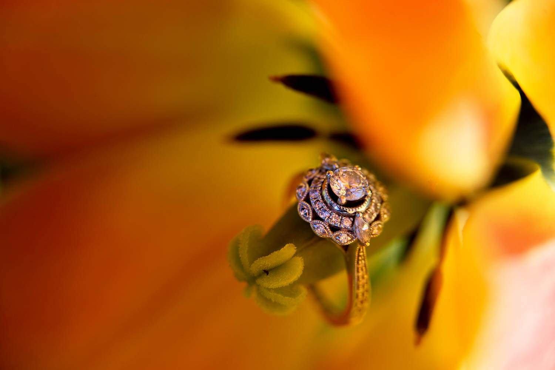— wedding ring in tulip —