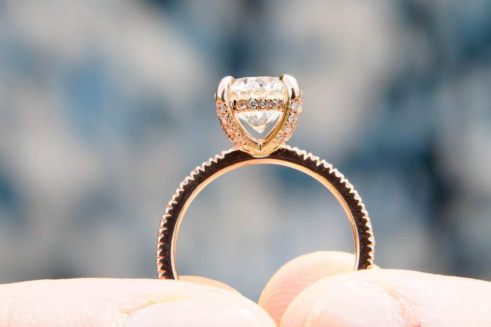 — enagement ring hold by the bride to be at minnesota landscape arboretum —