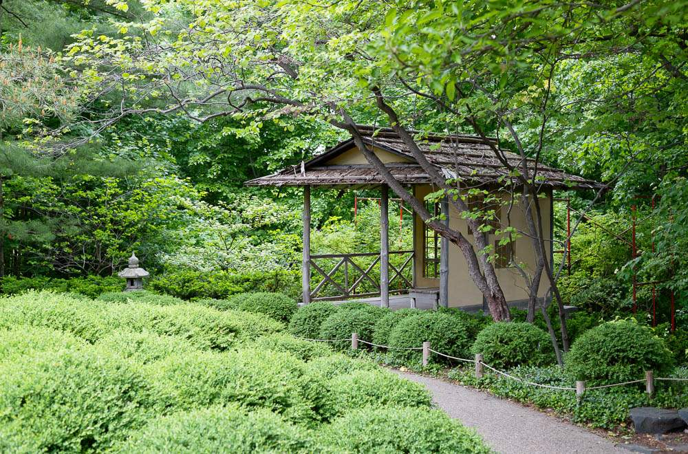 — Japanese garden for a small ceremony —