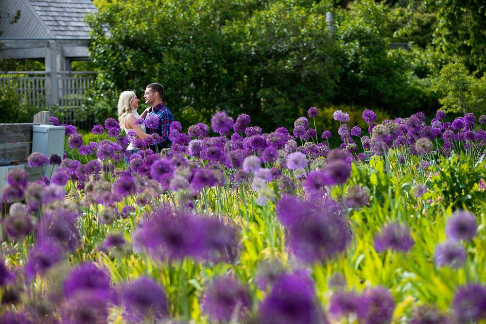 — seasonal photo of couple kissing at the herb garden during the spring —