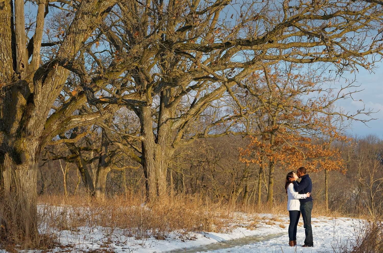 winter oaks at quarry hills rochester