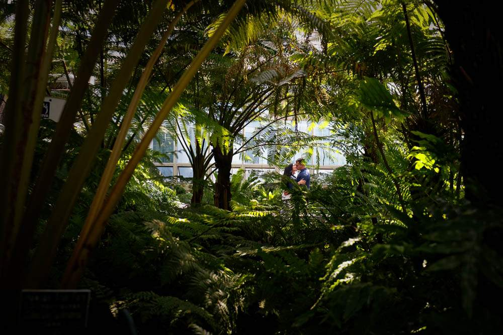 — Engagement photos with Plant and Flowers at St paul zoo and conservatory —