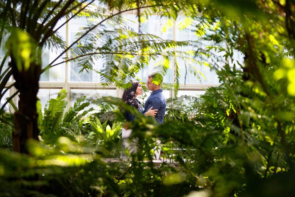 — Photograph of a Couple Kissing troug exotic plants —