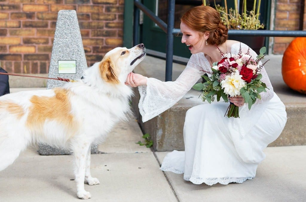 bride dog and florals