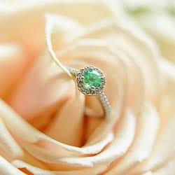 green ring on pink rose